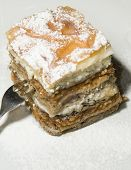Gibanica Traditional Slovenian Dessert Cake With Poppy Seeds Apple  Walnuts Cottage Cheese As Photog