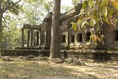 stock photo of lame  - Angkor Wat - JPG
