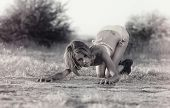 Fashion grunge bikini style.  Wild woman crouching in provocative pose in desert wilderness