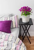 Purple Flowers In A Bright Bedroom