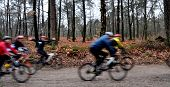Group Of Mountainbikers In The Woods Having Fun