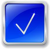 Check Mark Icon On Blue Button
