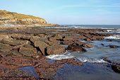 Coast of Torquay