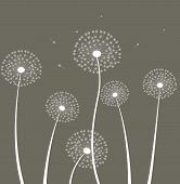 Decoration With Dandelion.