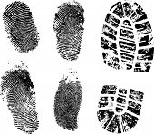 fingerprints and bootprint