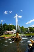 Samson fountain in petergof park Saint Petersburg Russia