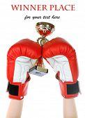 Box training and punching bag, isolated on white