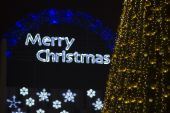 """""""merry ChristmasLights Backgrounds And Christmas Tree Decorations"""