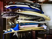 Surfer Boards Under Roof For Rental