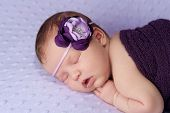 Sleeping Newborn Baby With Purple Flower Headband