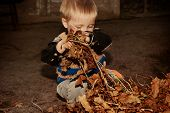 The Boy Cleans Autumn Dry Leaves In The Garden.