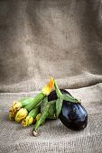 Courgettes And Eggplants