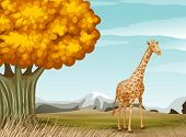Illustration of a giraffe near the big tree