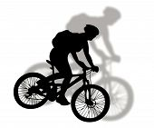 Mountain Bike Silhouette