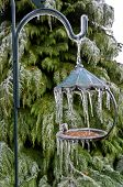 Bird feeder with icicles hanging from post