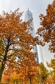 One World Trade Center In Autumn