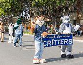Pasadena 2014 Doo Dah Parade