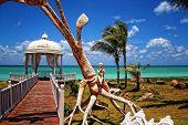 Romantic place  Cuba Varadero