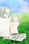 Lot of one hundred dollar bills in bags on grass on natural background