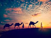 image of dune  - Vintage retro effect filtered hipster style image of  Rajasthan travel background  - JPG