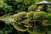 Landscape of Zen garden