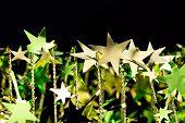 Shining Golden Christmas Stars On Black Background