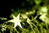Golden Christmas Star Ornament