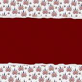 Marijuana Leaves Torn Background
