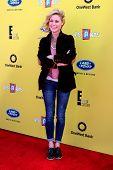 LOS ANGELES - NOV 16:  Julie Bowen at the PS Arts Express Yourself Benefit at the Barker Hanger on November 16, 2014 in Santa Monica, CA
