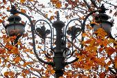 Vintage Public Lighting Pole