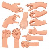 Set of several hands. Cartoon and vector isolated objects