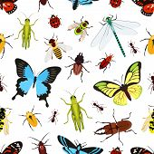 image of insect  - Insects colored seamless pattern with grasshopper wasp butterfly vector illustration - JPG