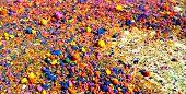 Coloured Balls on ground