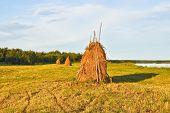 Haystacks.