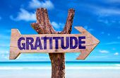 stock photo of humility  - Gratitude sign with a beach on background - JPG