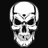 image of dead-line  - Black and white human skull with a lower jaw - JPG