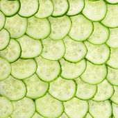 picture of cucumber slice  - Surface coated with a cucumber slices as an abstract food background - JPG