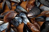 stock photo of mollusca  - Shells of mussels on wooden kitchen board - JPG