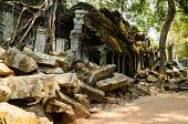 picture of raider  - Ta Prohm - JPG