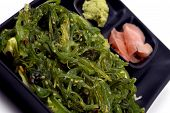 Food - Seaweed Salad