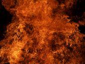 Fuego [2]
