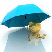 paraguas y hucha. Concepción de la defensa de acumulación financiera