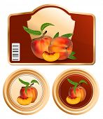 Vector. Background for design of packing jam jar with photo-realistic peaches.