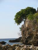Tortola Rocks