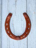 Horseshoe on the old door