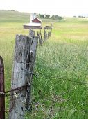Farm Fencepost
