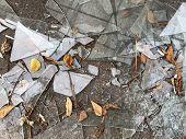 Broken Window In The Street On The Asphalt, Close-up. Pile Of Broken Glass, Asphalt With Orange Leav poster