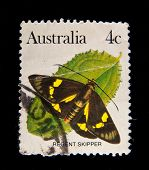 AUSTRALIA - CIRCA 1980s: A stamp printed in Australia shows butterfly , circa 1980s