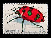 AUSTRALIA - CIRCA 1980s: A stamp printed in Australia shows beetle Cotton Harlequin Bug, circa 1980s