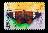 AUSTRALIA - CIRCA 1998: A stamp printed in Australia shows butterfly, circa 1998